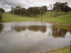 How do I stop my farm pond from leaking?