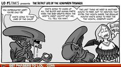 sci fi fantasy Aliens - Xenomorph Parenting