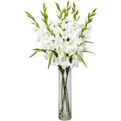Nearly Natural Large Gladiola Silk Arrangement with Cylinder Vase (1.410 HRK) ❤ liked on Polyvore featuring home, home decor, floral decor, fake flowers, white fake flowers, floral arrangement, faux flowers and silk flower bouquets