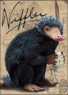 Fantastic Beasts Movie Niffler Name and Photo Fridge Magnet Harry Potter NEW Find great deals for Fa Cosplay Harry Potter, Harry Potter New, Mundo Harry Potter, Harry Potter Facts, Harry Potter Universal, Harry Potter Characters, Fantastic Beasts Movie, Fantastic Beasts And Where, Beast Film