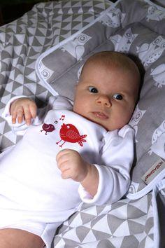 Baby Lernt Farben (Babys Buch 3) (German Edition)