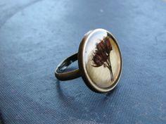 Pressed Flower Ring Botanical Jewelry Pressed Sedum Plant Preserved Plants Antique Brass