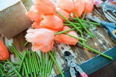 You can have tulips all spring long with this charming and easy DIY Tulip Centerpiece. Use whichever color of tulips you want to bring Spring indoors! Easter Crafts For Kids, Crafts To Do, Tulips, Easy Diy, Centerpieces, Spring, Awesome, Creative, Flowers