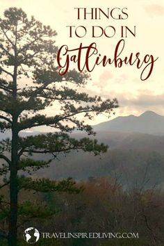 Are you planning a trip to the Smokies? You'll find there's no shortage of things to do in Gatlinburg, Tennessee. We're sharing our favorite attractions, restaurants and lodging via in the area of the Smokey Mountains. Tennessee Attractions, Gatlinburg Tennessee, Tennessee Vacation, Roadside Attractions, Mountain Vacations, Family Vacation Destinations, Vacation Ideas, Best Places To Travel, Places To Go