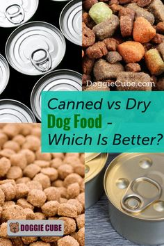 Canned vs dry dog food - Which is better? Before you decide on getting the best canned dog food or DIY some homemade dry dog food for your pet's diet, it's a good idea to compare both options. #dogdiet #dogfood