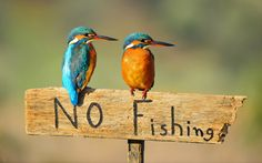No Fishing by Pantelis Thomaidis on 500px
