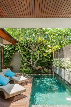 Backyard Pool Designs, Backyard Garden Design, Swimming Pools Backyard, Small Backyard Landscaping, Backyard Ideas, Small Swimming Pools, Lap Pools, Indoor Pools, Pool Decks