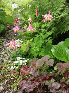 The Gardener's Eden - ❧ Ferncliff Gardens & ❧ Secret Garden