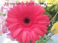 Use your light, your good, to change today. FVW