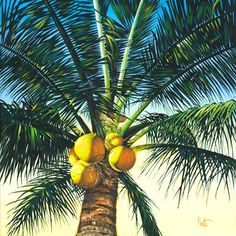 One of the easiest ways to add an island vibe to an interior space is with beach scene wallpaper and tropical wall murals. Shop our extensive selection of beach wallpapers and beach wall murals. Beach Scene Wallpaper, Beach Wall Murals, Murals Your Way, Tropical Wallpaper, Pop Out, Meditation Space, Reception Areas, Beach Scenes, Green Leaves