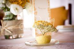 Július 12.-én Anna és Tamás esküvője alkalmából igyekeztünk Visegrádra, hogy a Nagyvillám étteremben dekorációt készítsünk.