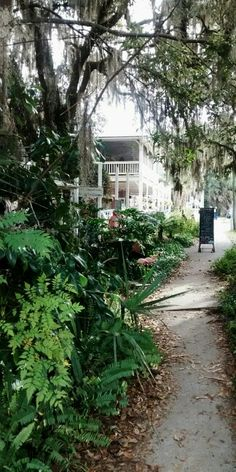 Hotel Café In Micanopy Florida 1 2 15 Photo By Ann Of Daytona