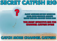 how to make a catfish rig