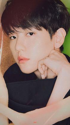Baekhyun Hot, Chanyeol, Kyungsoo, Cute Baby Wallpaper, Exo Official, Exo Memes, Chanbaek, Bambi, My Sunshine