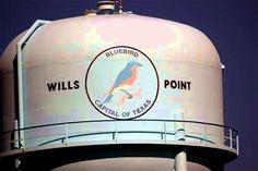 Wills Point Texas  Bluebird  water tower
