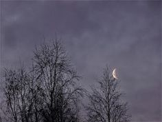 Portfolio Multimedeia: Moon in the morning in Lapland Moon, Celestial, Photography, Outdoor, Film Noir, The Moon, Outdoors, Photograph, Photo Shoot