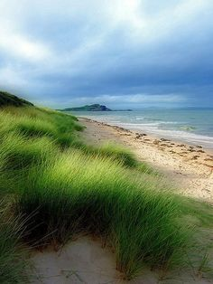 """""""Dunes"""" - Beach landscape with dunes and dune grass overlooking the ocean. Cape Cod, MA."""