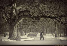 Outdoor winter  Weddings | Chicago Wedding Photographer ♥ Miller + Miller Chicago Illinois IL ...