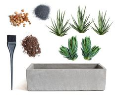 LushModern, cement planter, modern planter, cactus planter, window box