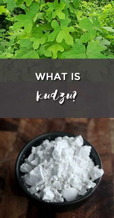 what is kudzu? explanation of what is kudzu and how to use this superfood