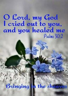 scripture the lord looks to and fro Biblical Quotes, Bible Verses Quotes, Spiritual Quotes, Faith Quotes, Bible Psalms, Healing Quotes, Heart Quotes, Prayers For Healing, Healing Heart
