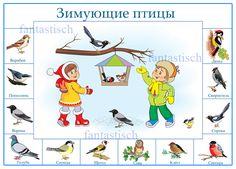 Telelő madarak.  Poster óvodás gyerekek