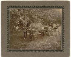 Antique photo of horses and buggy.