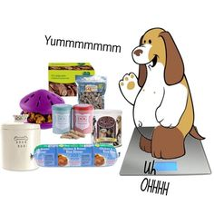 Does Your Pet Look Like This or Like You?, created by huggybear20 on Polyvore