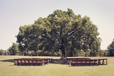 Photography: Sarah Kate, Photographer - sarahkatephoto.com Event Design: Holly Tripp Event Design - hollytrippeventdesign.com Floral Design: Bella Flora of Dallas - bellafloraofdallas.com  Read More: http://www.stylemepretty.com/2012/08/21/white-oaks-ranch-wedding-from-sarah-kate/
