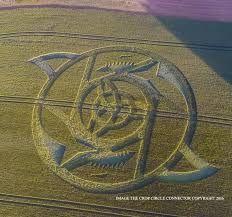 Résultats de recherche d'images pour «crop circles 2016»