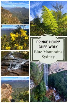 Are looking for an easy walk in the Blue Mountains? Prince Henry Cliff Walk from Echo Point to Scenic World packs a lot of awe-inspiring sights in an easy 1-hour walk. #KatoombaFalls #KatoombaCascades #BlueMountainsWalk