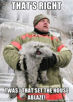 Twas I Cat - THAT'S RIGHT TWAS I THAT SET THE HOUSE ABLAZE!