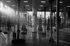 o fotógrafo mauro restiffe registrou a transformação do pavilhão ciccillo matarazzo, no parque ibirapuera, durante a montagem das obras da 32a bienal de arte de são paulo - instalação de frans krajcberg com vista para o parque ibirapuera, ao fundo