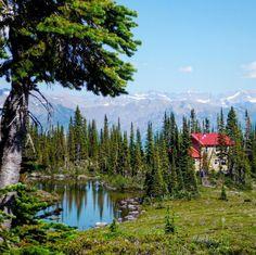 Lose yourself in ancient wilderness in one of BC's eco-lodges that are fully committed to conserving energy, the environment, and the cultural Lodges, British Columbia, Conservation, Wilderness, Environment, Culture, Mountains, Travel, Cabins