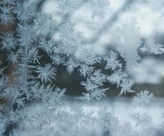 The perfect snowflakes