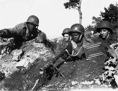 Integrated Military  Civil Rights Movement  Korean War