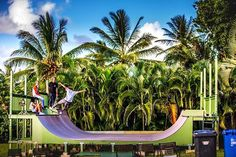 A ramp in paradise. || @carsonhancock #skateboard #skate #skatelife #skater #paradise #ramp #tricks #skatedeck #skatepark #palms #palmtrees #wildaloha #hawaiiunchained #livefree #gooutside #outdoors #play #skateramp #ride #hangloose