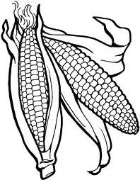 Vegetables Corn Is Good For The Body Coloring Page Kids