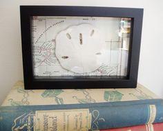 Ooo good idea!  Sand dollar with map background
