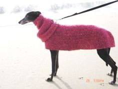 PDF Crochet Pattern - Pink Posey Dog Sweater - LoveItSoMuch.com