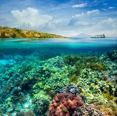 landscapelifescape: Gili Meno Island, Indonesia by Soft Light