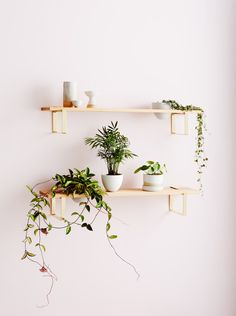 Display your house plants in style with Ivy Muse's latest – The Interiors Addict - Dekoration Ideen Indoor Plant Wall, Indoor Planters, Plants Indoor, Macrame Plant, Decoration Plante, Rustic Bathroom Vanities, Ivy Plants, Succulent Plants, Bedroom Decor