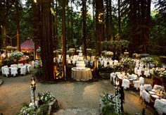 Get rid of those weird fur chair covers, and I think I've found my Snow White woodland inspired wedding location. And it's in Big Sur!! So close!!