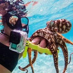 Get your tentacles on some #GoKnuckles  // Your source for GoPro, Drone & Smartphone Camera & Tech Gear // www.GoWorx.com