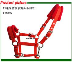 Free shipping horse halter,metal eyelet,21MM wide &5MM thick PP webbing.1 pieces per lot(LT1005) Horse Riding, Alibaba Group, Horses, Free Shipping, Metal, Metals, Horse, Horseback Riding