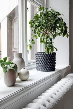 Veckans vackraste hem – en sval och harmonisk sekelskiftesdröm - Metro Mode Zen Home Decor, Funny Home Decor, Cute Home Decor, Fall Home Decor, Plywood Furniture, Plants On Window Sill, Window Ledge Decor, Kitchen Plants, House Doctor