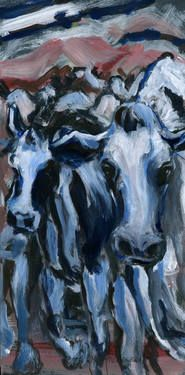 cows in a line 3