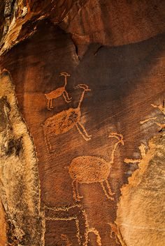 Descending Sheep, by Randy Langstraat: Three well-executed bighorn sheep petroglyphs pecked into a canyon wall in southern Utah.