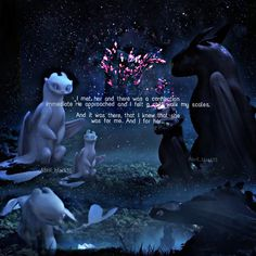 Toothless and the light fury - How To Train Your Dragon The Hidden World Trailer Httyd Dragons, Dreamworks Dragons, Disney And Dreamworks, How To Train Your, How Train Your Dragon, Fury Quotes, Dragon Quotes, Walt Disney Animation, Cartoon Tv Shows