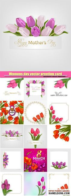 В векторе поздравительные открытки с тюльпанами к женскому празднику 8 Марта   Womens day vector greeting card, tulip, 8 march vector